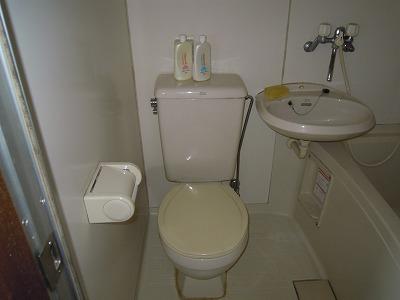 第2あずみの荘 201号室のトイレ