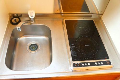 レオパレス紅葉 203号室のキッチン