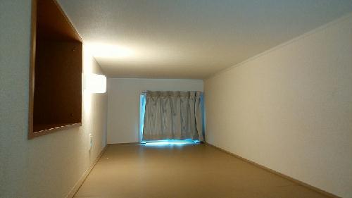 レオパレス小柳町Ⅱ 101号室のリビング