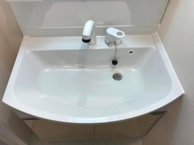 Grande Etoile(グランテトワール) 301号室の洗面所