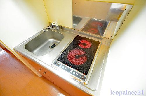 レオパレスパームヒルズB 207号室のキッチン