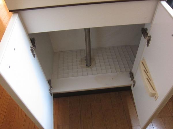 間橋ビル 202号室のキッチン