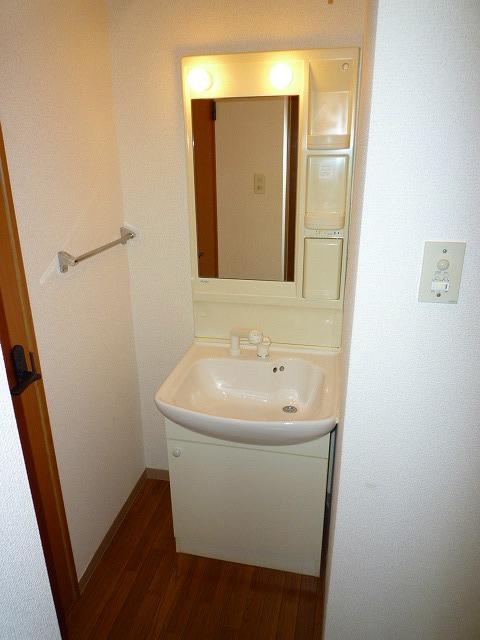 プロニティサクラダ 202号室の洗面所