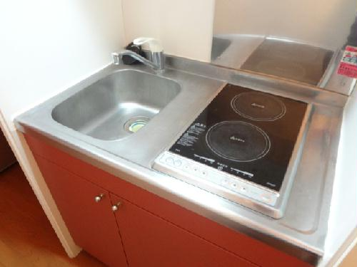レオパレスサンシャインⅢ 202号室のキッチン