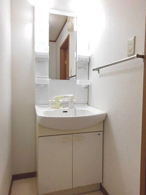 フローラーリア 02030号室の洗面所