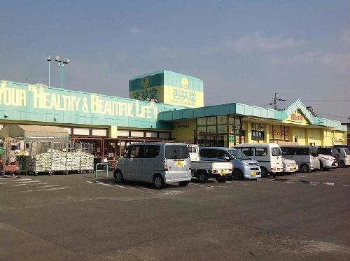 レオパレスCOZY 207号室のベッドルーム