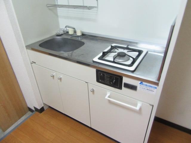 ブルースカイ 202号室のキッチン