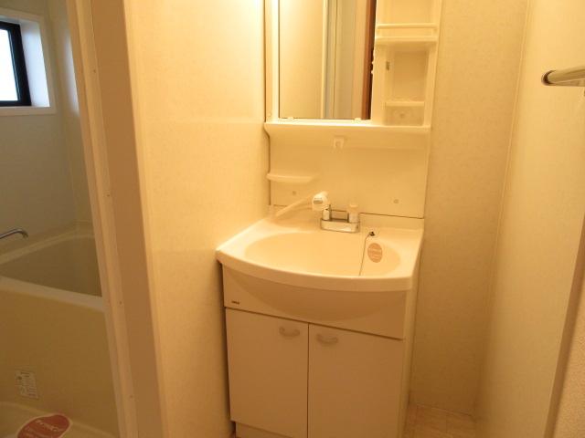 メゾン・ド・ベガ 206号室の洗面所
