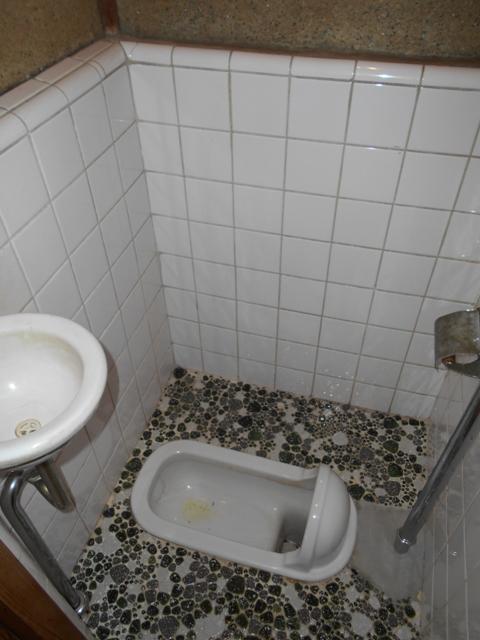 富士見荘 7号室のトイレ
