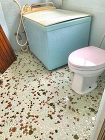 吉池ビル 301号室の風呂