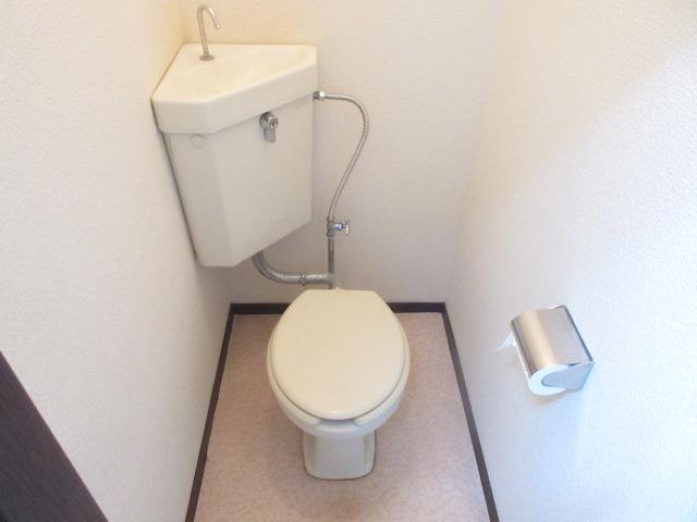 ザ・テラス 105号室のトイレ