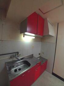林マンション 203号室のキッチン