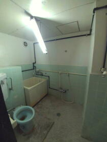 林マンション 203号室のトイレ