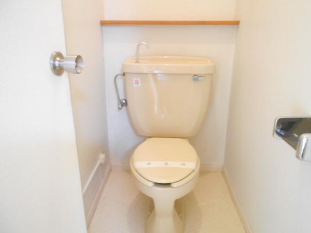 メゾンラフォーレ 202号室のトイレ