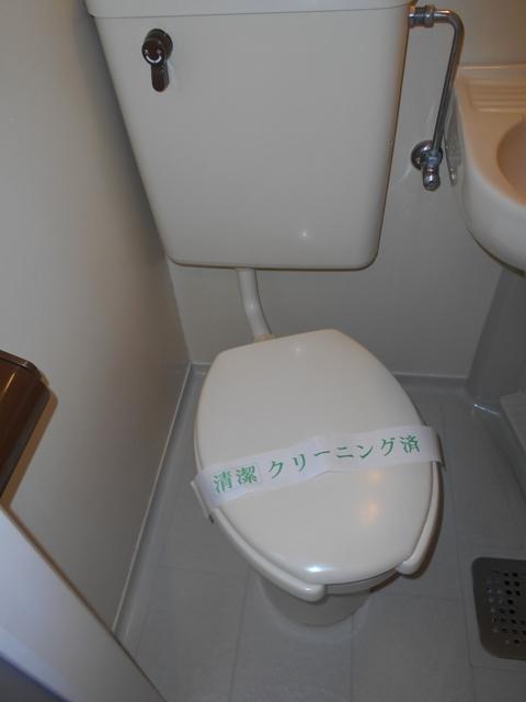 上板橋ダイカンプラザシティⅡ 209号室のトイレ