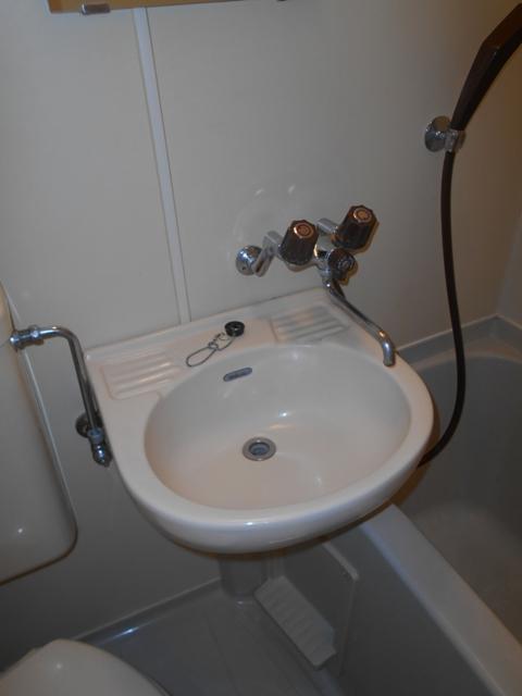 上板橋ダイカンプラザシティⅡ 209号室の洗面所