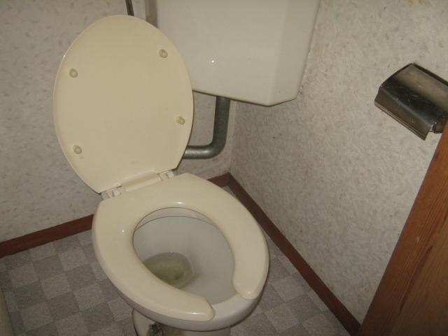 川合アパート 101号室のトイレ