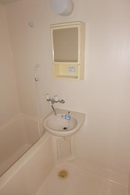 ライジング泉 302号室の洗面所