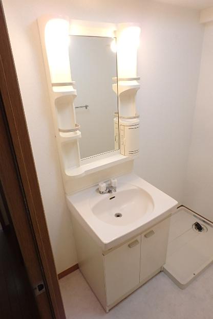 グランドール大幸Ⅰ 301号室の洗面所