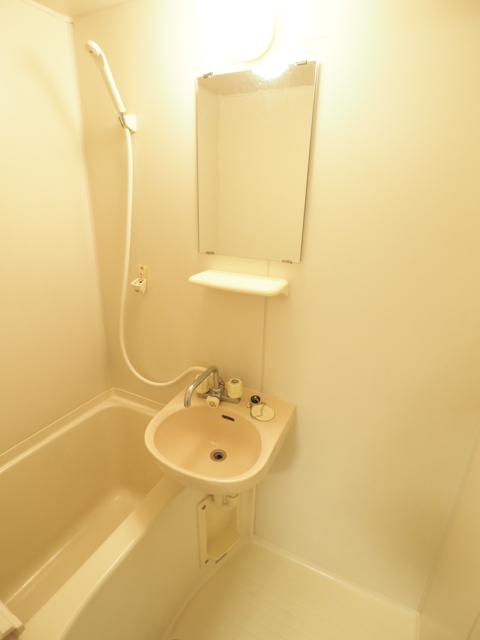 アネックス大幸 3C号室の洗面所