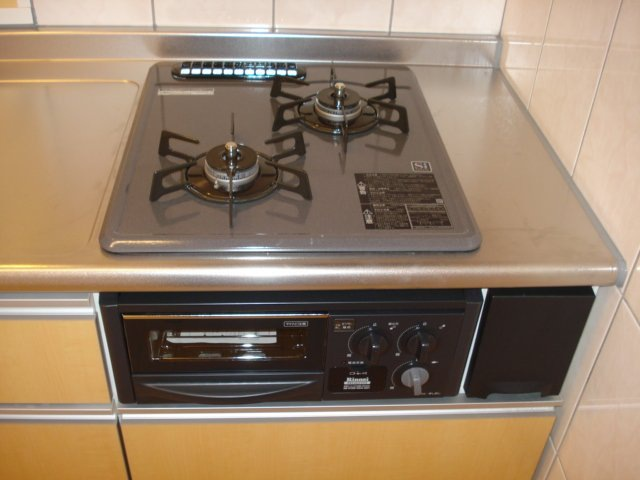 フォレストアーク大森Ⅱ 102号室のキッチン