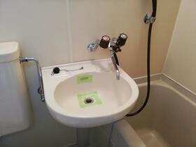 メゾン・ド・ピエール 0413号室の洗面所