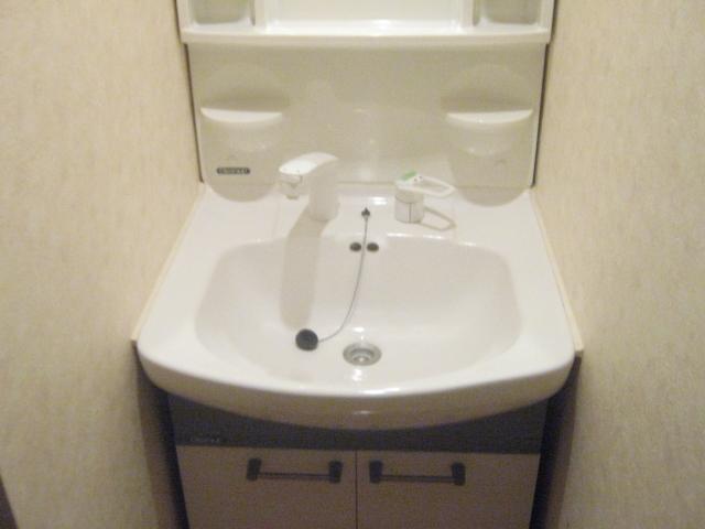 ドルフィンズコート西ヶ原 C号室の洗面所