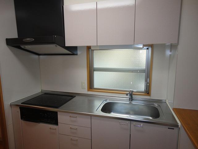 ツインクルコート桂EAST 203号室のキッチン