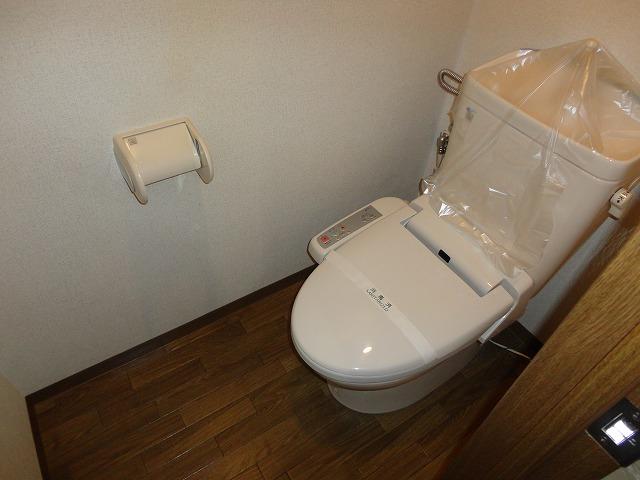 ジオコート桂 101号室のトイレ