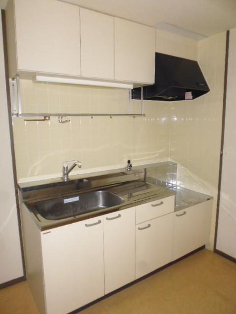 エバーグリーン嵐山 303号室のキッチン