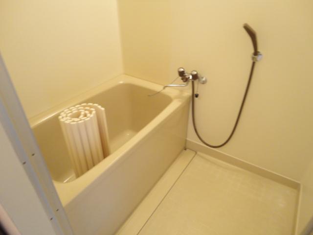 ウェルネスアーク桂 501号室の風呂