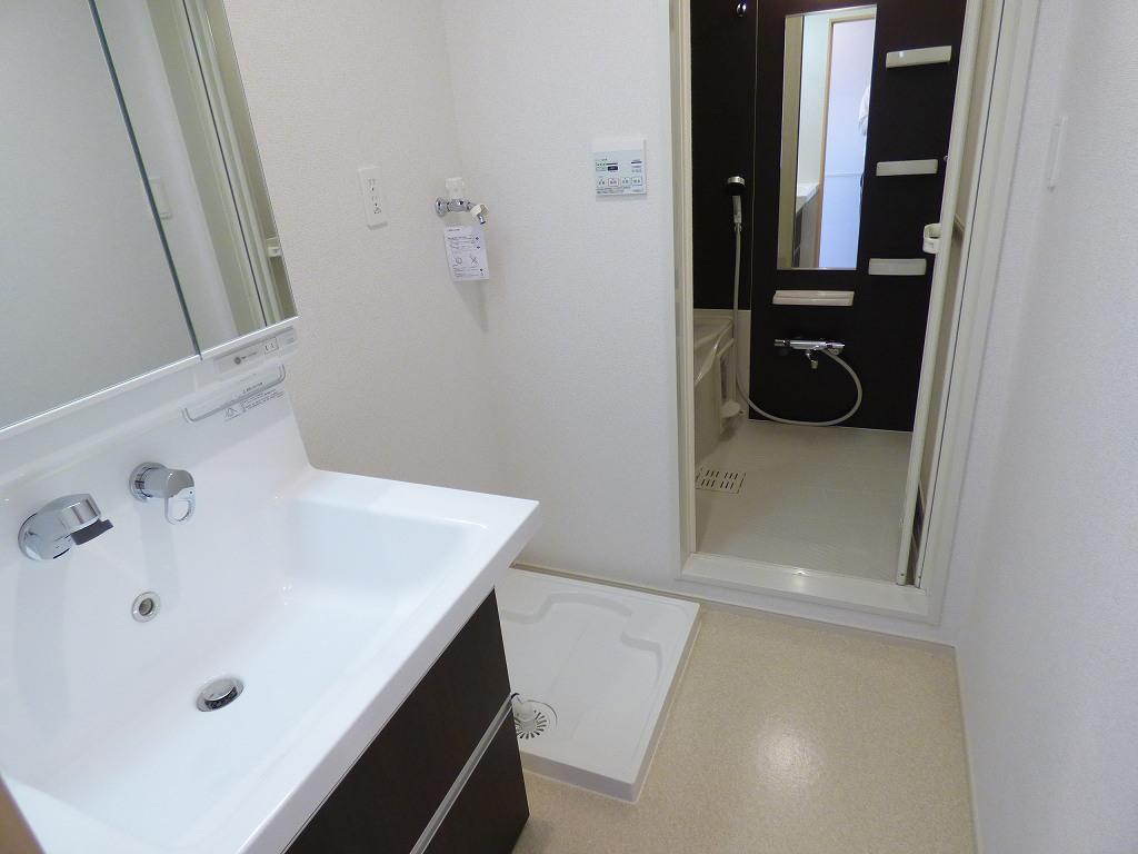 ヴェルデ ストーリアⅡ 03080号室の洗面所