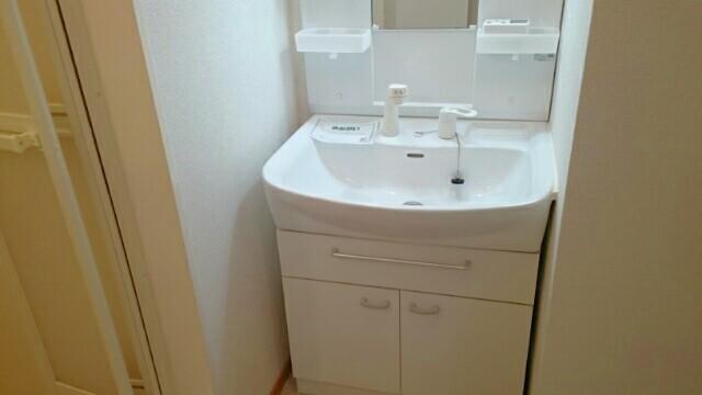 フォレスタ 01010号室の洗面所