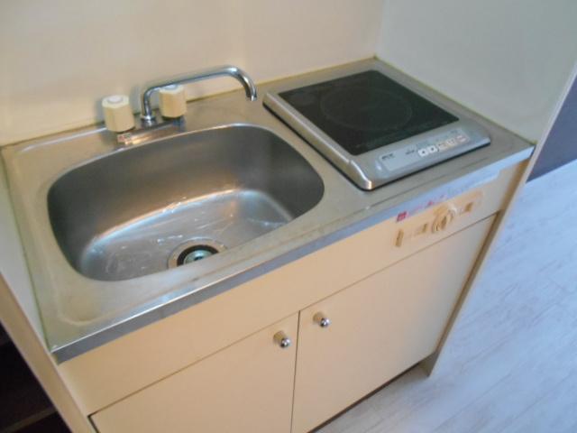 フラッツ太秦 206号室のキッチン