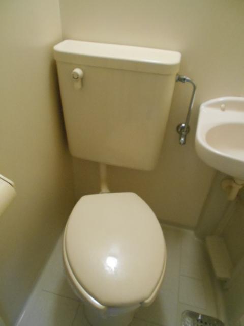 フラッツ太秦 206号室のトイレ