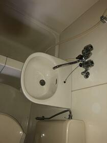 ブルーハイツ 201号室の洗面所