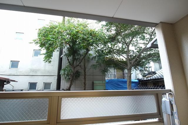 ロイヤルシティ- AYA 01030号室の景色