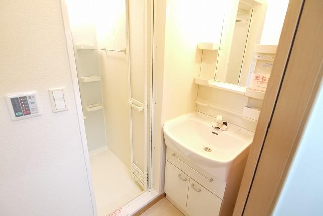 ロイヤルシティ- AYA 01030号室の洗面所