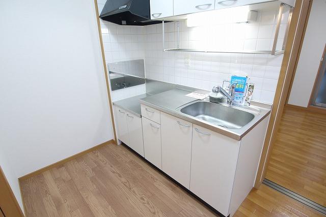ロイヤルシティ- AYA 01030号室のキッチン