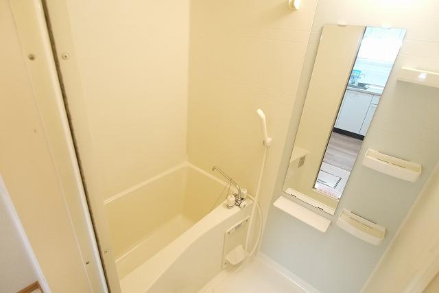 ロイヤルシティ- AYA 01030号室の風呂