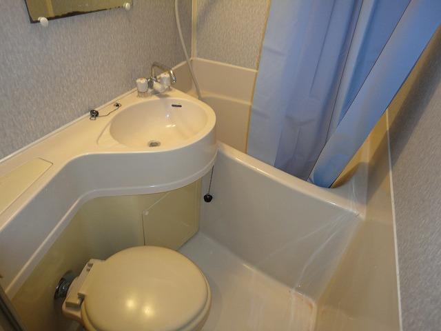 ロイヤルハイツナカムラ 101号室の風呂