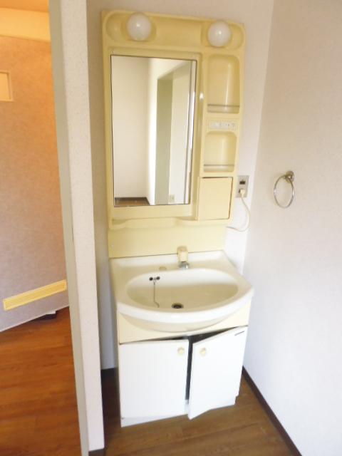 離宮ガーデンハイツ 206号室の洗面所