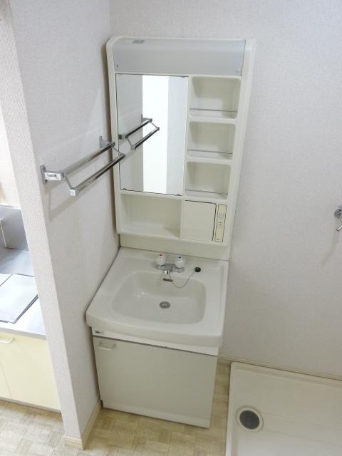 フレグランス井上 202号室の洗面所