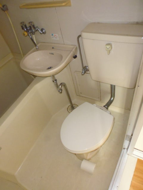 ハイツジュン 301号室のトイレ