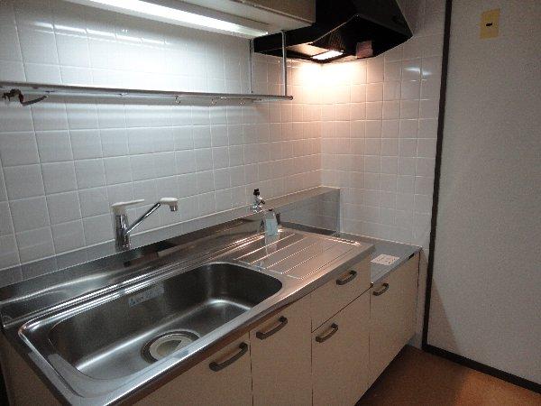 エバーグリーン嵐山 405号室のキッチン
