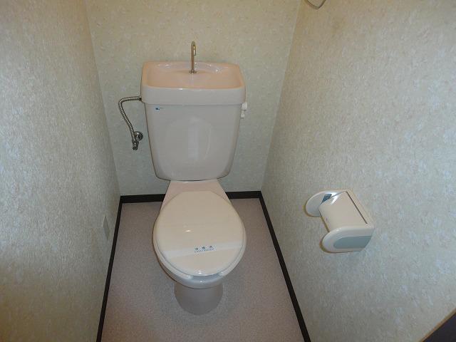 ヴェルデ三番館 103号室のトイレ