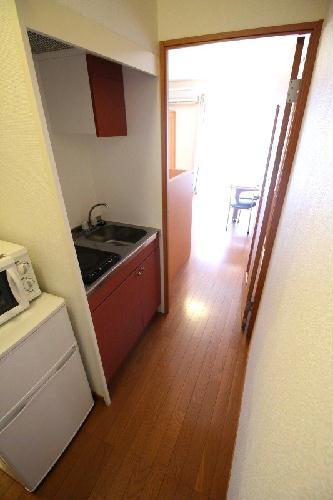 レオパレスヤングフォレストB 202号室のキッチン