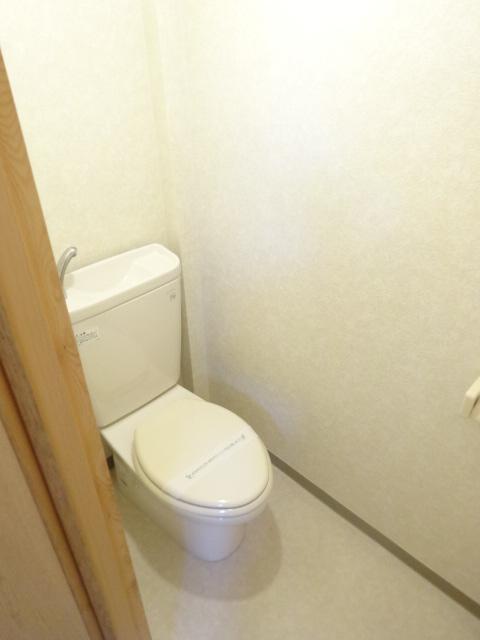 ハイメント桂 105号室のトイレ