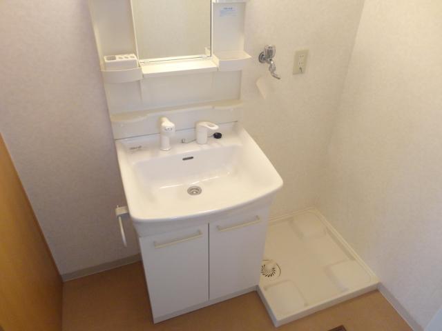 ランブラス桂水築町 108号室の洗面所
