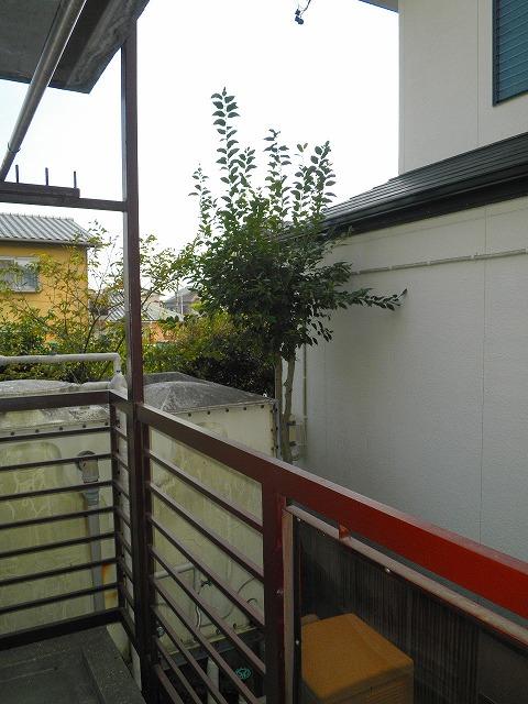 ジュエ狐ヶ崎マンション 15号室の景色